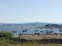 Skjellfarmer bakerst i bildet. De lå tett rundt øya.